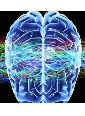 Las terapias neurocientíficas