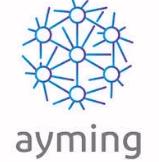 Ayming, socio estrat�gico de Synertrade en Espa�a e Italia