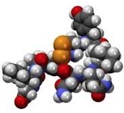 Científicos descubren que la oxitocina reduce el dolor pacientes con cáncer