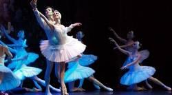 'El Lago de los cisnes' en el Teatro de la Luz Phillips Gran Vía