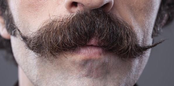 Pequeña historia de la brevedad de un bigote