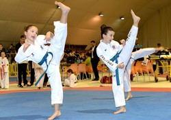 Fiesta del taekwondo regional en Marina d'Or