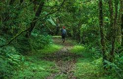 """Taiwán presenta en Galicia la ruta histórica y cultural """"Tamsui-Kavalan"""", inspirada en el Camino de Santiago"""