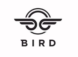 Bird despega en España