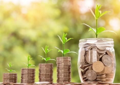 Los primeros pasos en la búsqueda de la independencia financiera