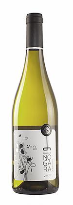 El Dominio de Nogara 2017, el vino afrutado de La bodega Valtravieso que se consolida en su segmento