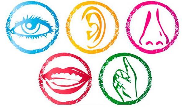 El marketing sensorial, la mejor estrategia de venta para las grandes superficies