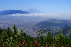 Te presentamos la mejor forma de conocer la isla de Tenerife