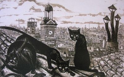 En Elecciones, gatos, riñas y gatadas