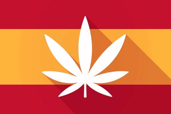 El mercado financiero del cannabis en España