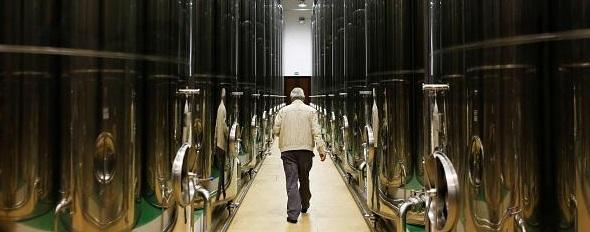 Consecuencias de la tasa arancelaria de Estados Unidos al aceite de oliva