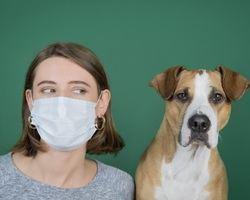 Empresa líder de diagnóstico veterinario no observa casos de Covid-19 en mascotas
