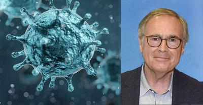 Descubren un nuevo tipo de coronavirus en Barcelona en una muestra de marzo de 2019