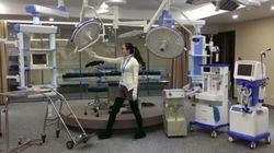 China investiga el trasplante de órganos de cerdos en monos