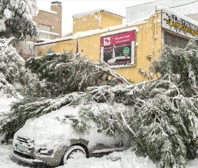 Cómo reclamar al seguro en caso de sufrir daños