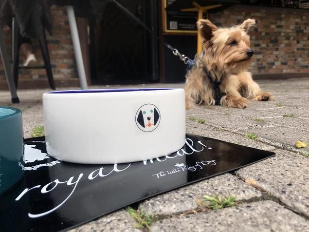 Menú canino, la nueva apuesta en la hostelería valenciana