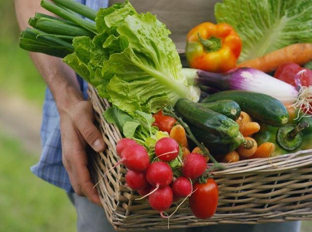 Crece en España un 55% el ecommerce de productos gourmet