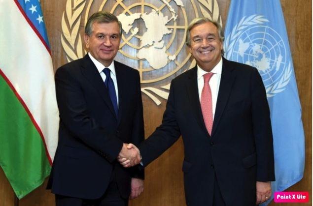 Estado de Derecho de los intereses humanos en los procesos democráticos del nuevo Uzbekistán