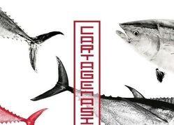 Cartagena coge la feria gastronómica dedicada al atún rojo