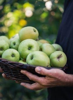 Lidl incrementa un 17% sus compras de manzanas y peras españolas en solo dos años