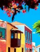Una forma diferente de conocer Tenerife