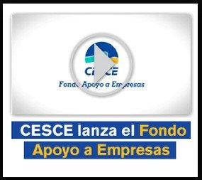 CESCE es una compañía de capital mixto fundada en 1970 en la que el Estado cuenta con la mayoría y en la que participan las principales entidades financieras españolas, así como algunas compañías privadas de seguros.
